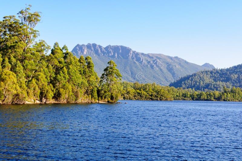 Озеро Rosebery в зоне западного побережья Тасмании стоковые фотографии rf