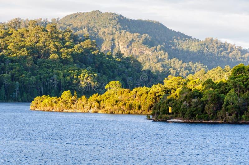 Озеро Rosebery в зоне западного побережья Тасмании стоковое изображение