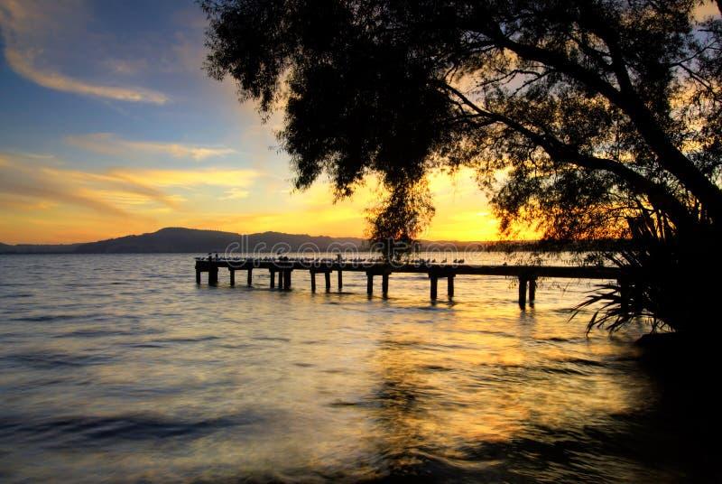 Download Озеро Rotorua на заходе солнца. Северный остров, Новая Зеландия Стоковое Изображение - изображение насчитывающей взгляд, деревянно: 33731481