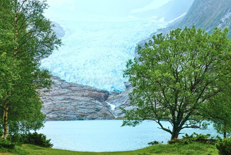 Озеро Svartisvatnet и взгляд к леднику Svartisen (Норвегия) стоковое фото