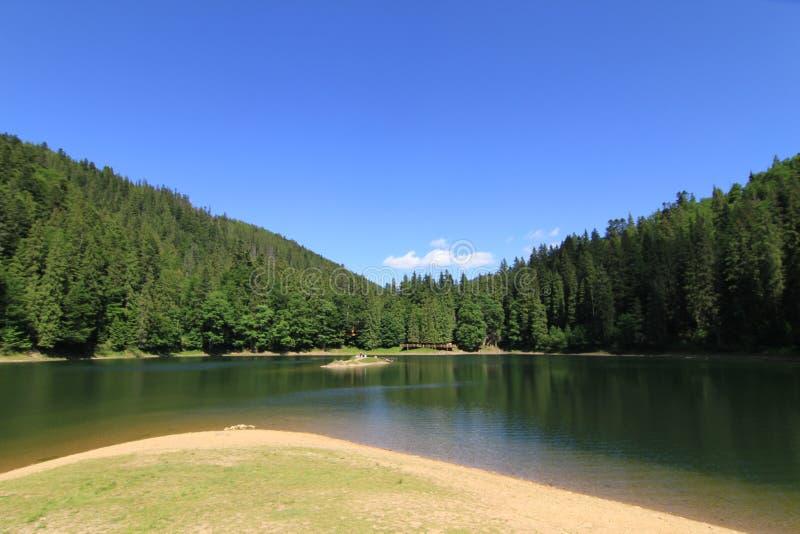 Озеро Synevyr стоковое изображение rf