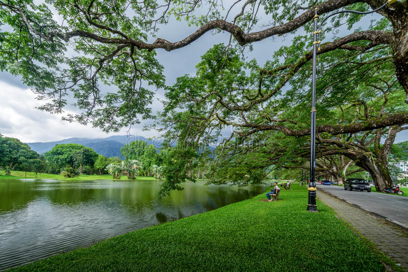 озеро taiping сада стоковая фотография rf