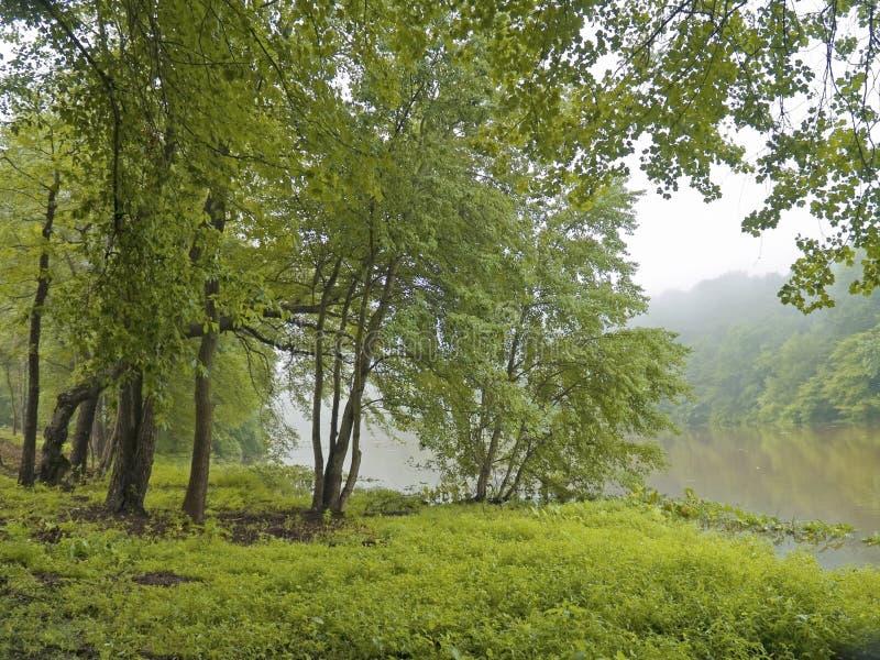 озеро thompson рощи стоковое фото