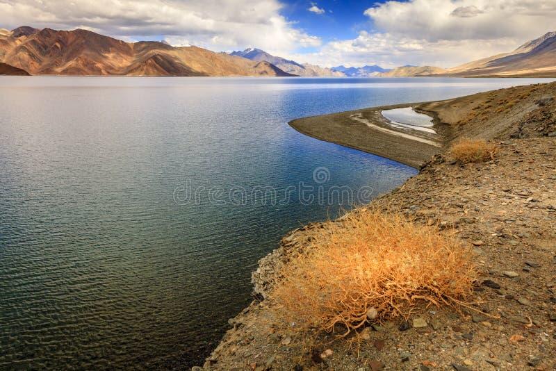 Озеро Tso Pangong стоковая фотография rf