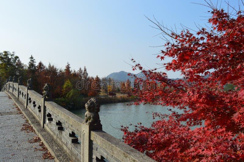 Озеро XiangHu стоковая фотография
