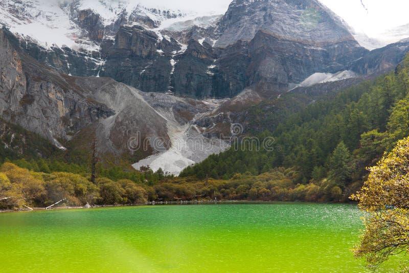 Озеро Zhuomala в живописной местности Yading Китая стоковая фотография rf