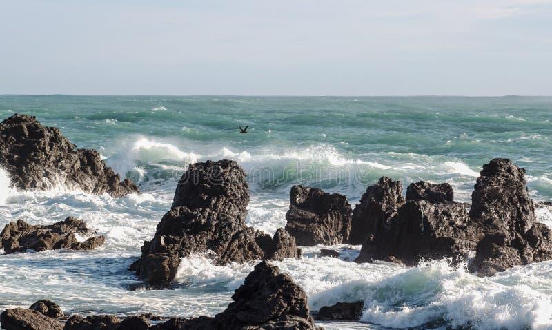 Океанские волны разбивая против прибрежных утесов стоковое изображение