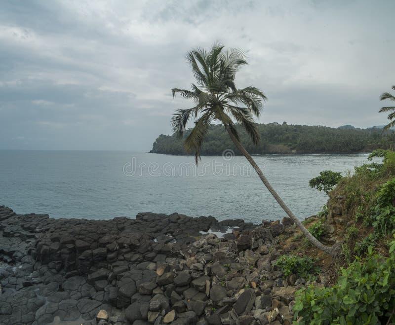 Океанский бассейн тропического острова Sao Tome стоковое фото rf
