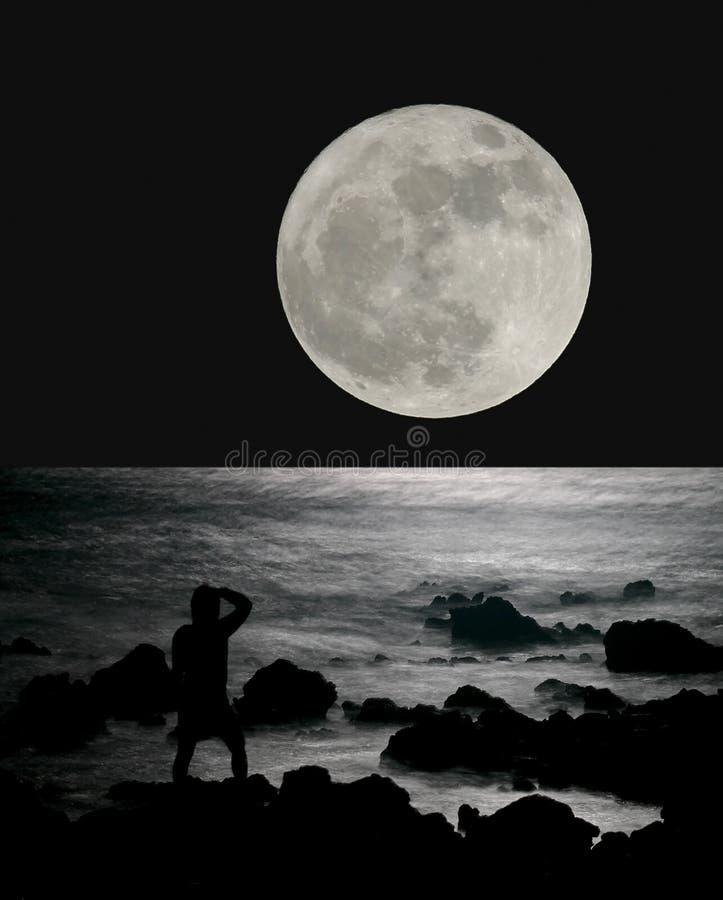 океан луны над поднимать иллюстрация вектора