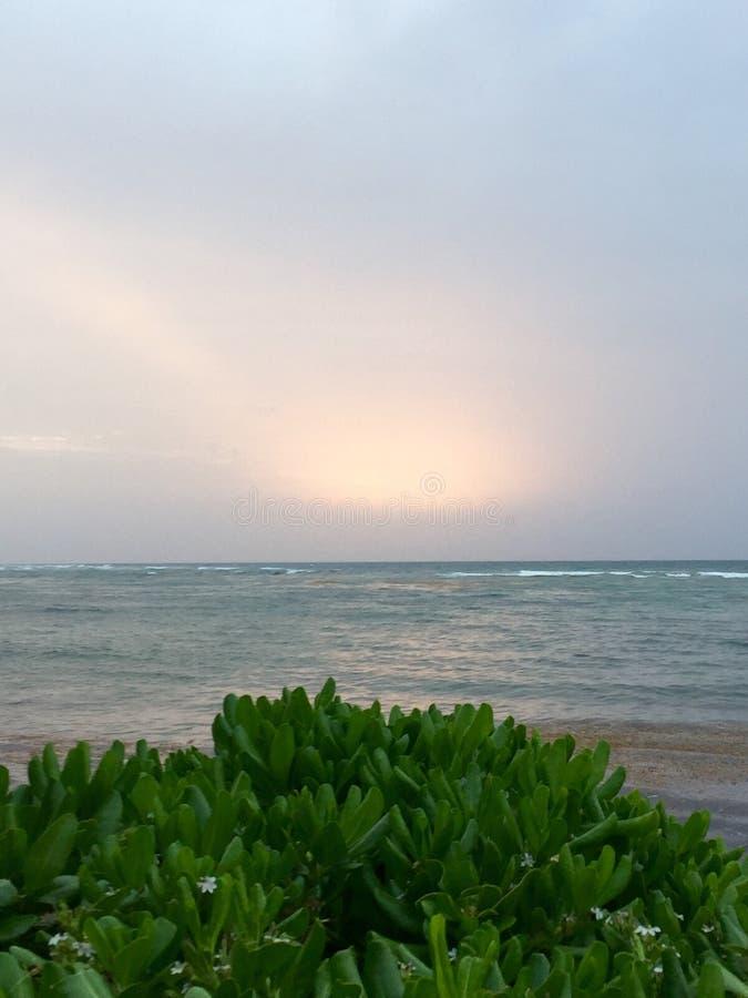 океан над восходом солнца стоковые фото