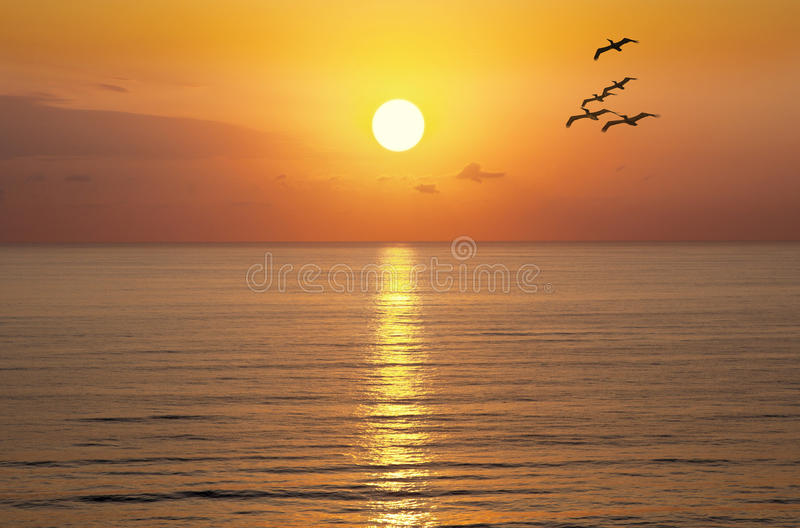 Океан Солнця захода солнца восхода солнца стоковая фотография