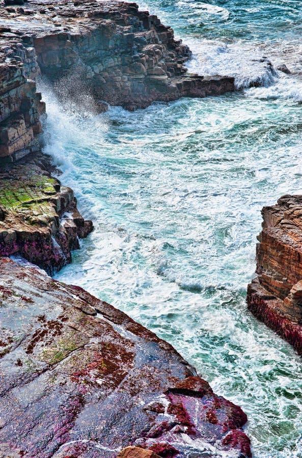 океан трясет волны стоковые фото