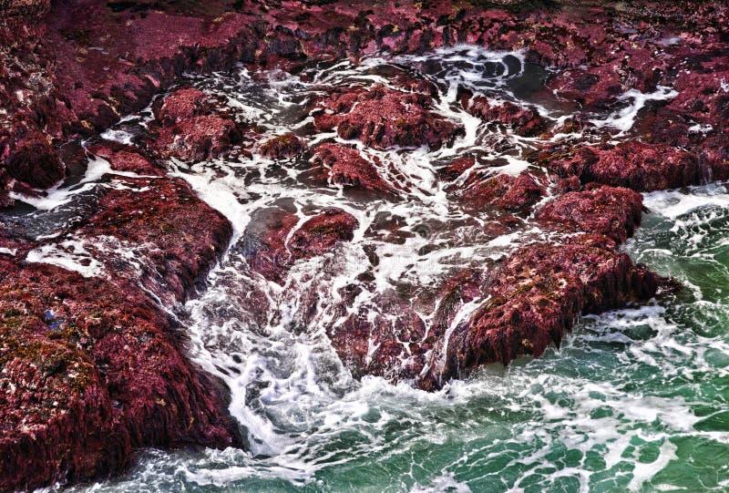 океан трясет волны стоковое изображение