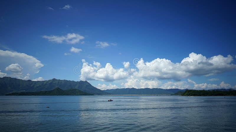 Океан MOS стоковая фотография