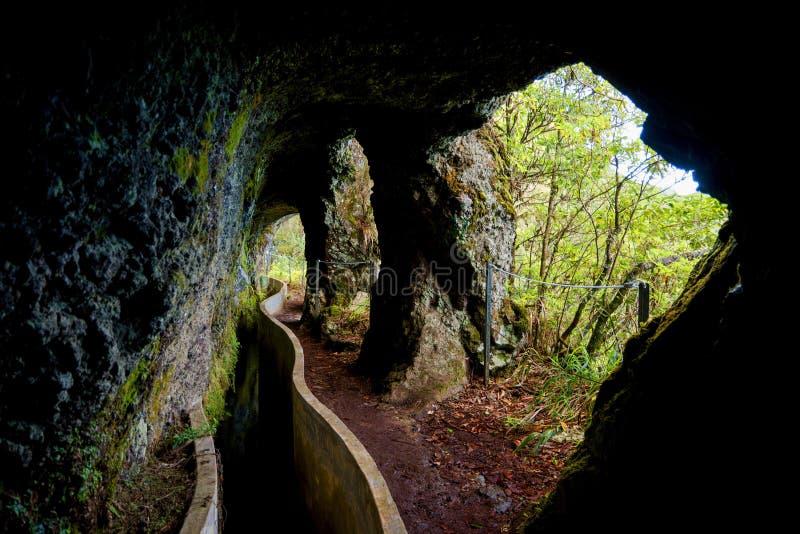 Окна пещеры на levada делают Furado, Мадейру, Португалию стоковые изображения rf