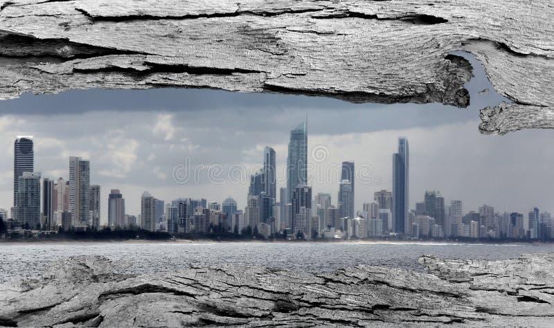 Окно коры дерева к городу Gold Coast стоковое изображение