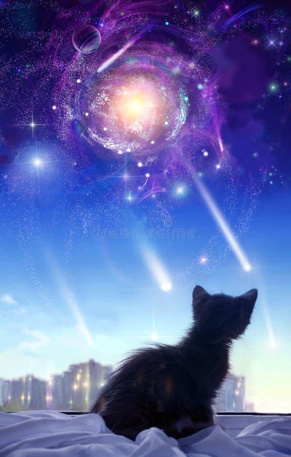 окно котенка иллюстрация вектора