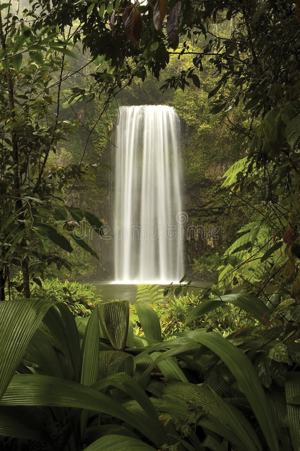 окно природ стоковое изображение