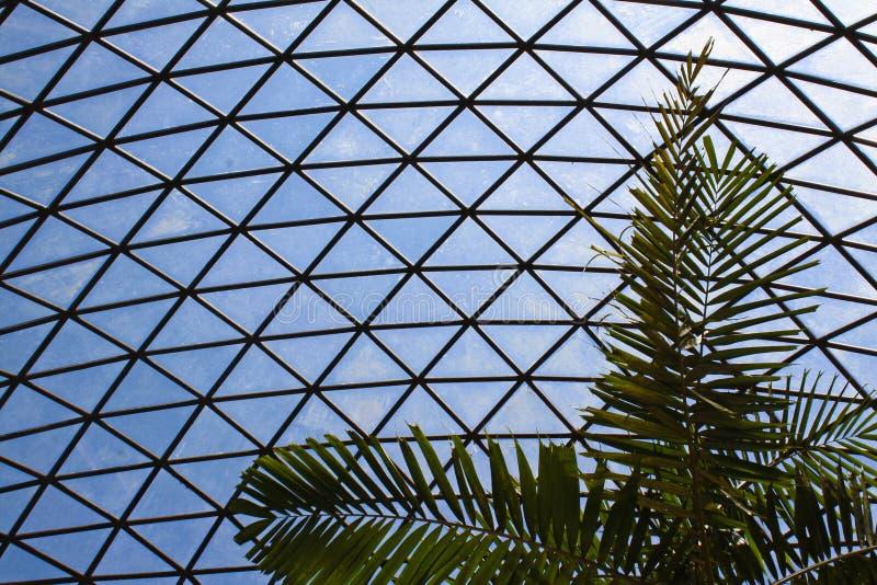 Округленный потолок с сталью и стеклом стоковая фотография