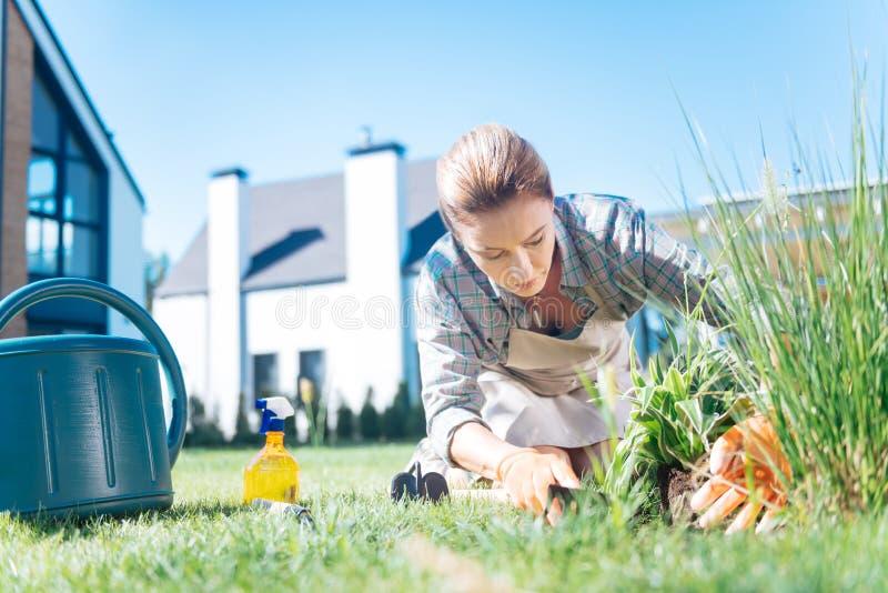 окружающая среда Белокур-с волосами женщины любящая засаживая новые цветки в саде стоковые изображения rf