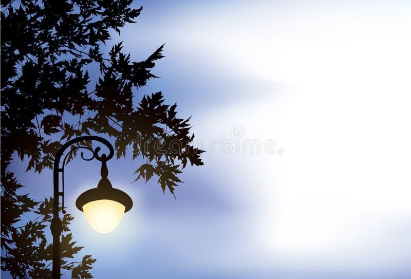 окруженный клен фонарика ветвей накаляя иллюстрация вектора
