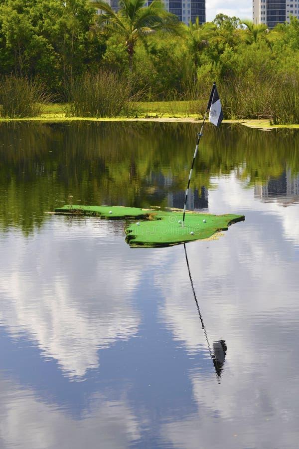 окруженный пруд гольфа зеленый стоковая фотография rf