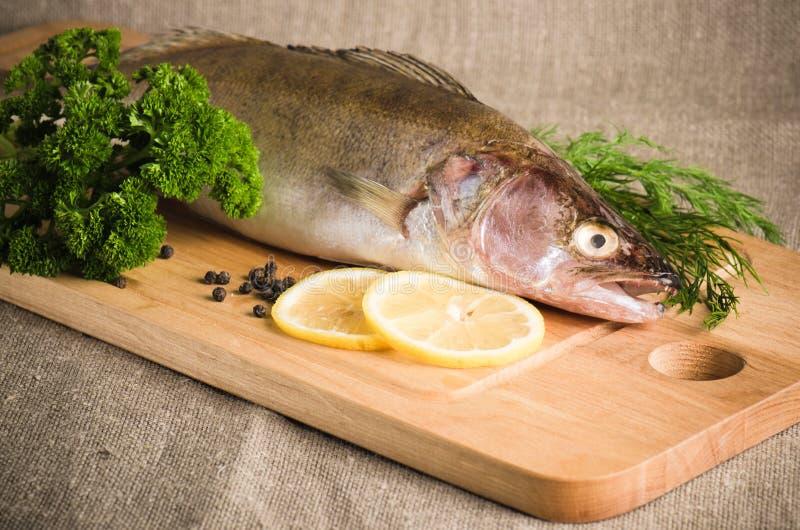 Окунь Pike на доске кухни стоковое изображение