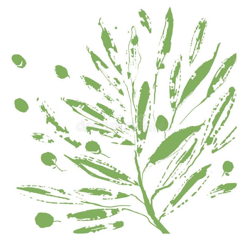 оливковое дерево ветви иллюстрация вектора