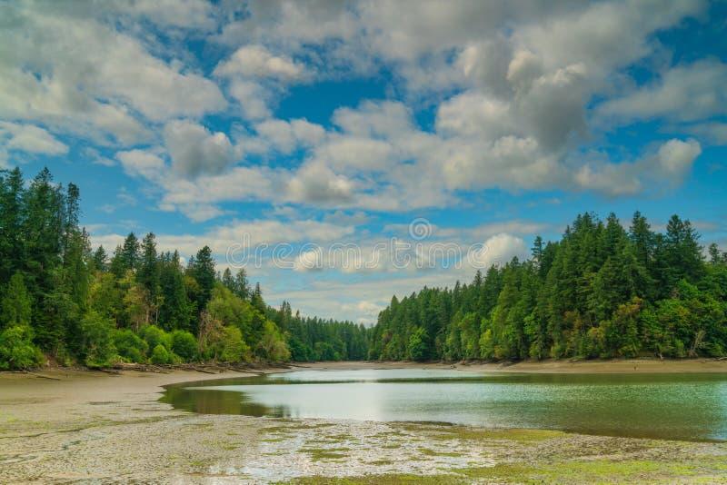 Олимпия Вашингтон звука Puget залива Чэпмена стоковые изображения rf