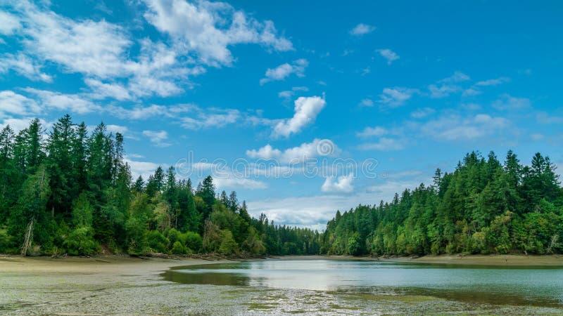 Олимпия Вашингтон звука Puget залива Чэпмена стоковое изображение