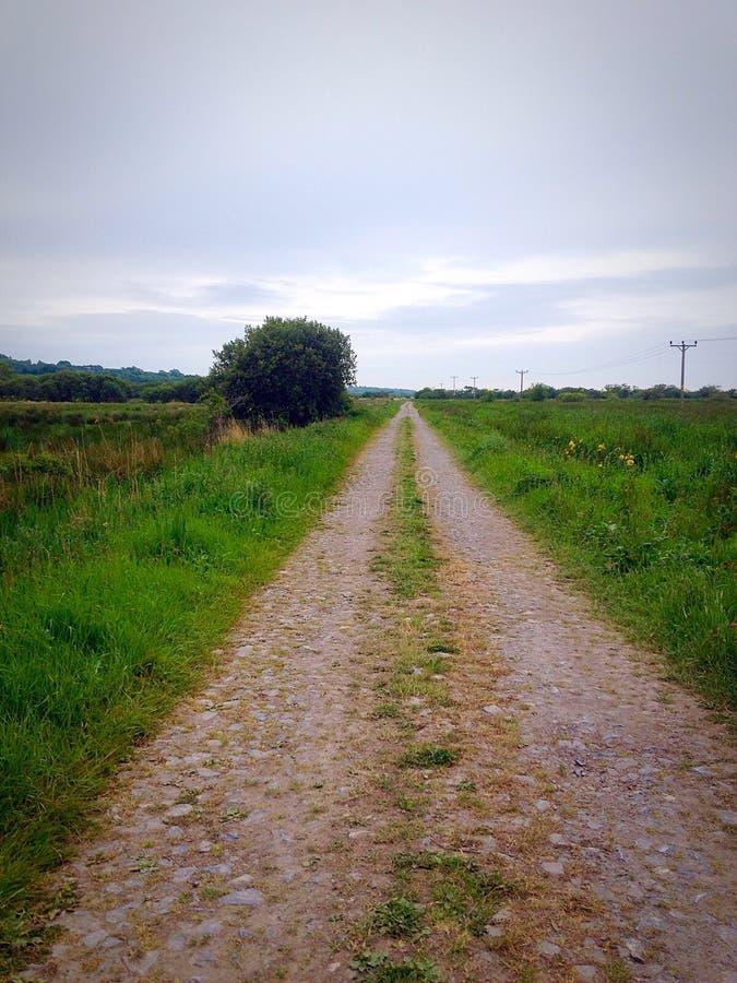домашняя длинняя прогулка стоковые изображения rf