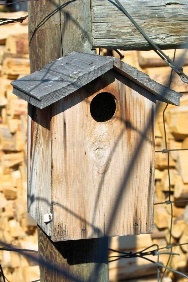 дом птицы старая стоковое фото rf
