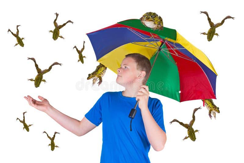 Она идет дождь лягушки стоковое фото rf