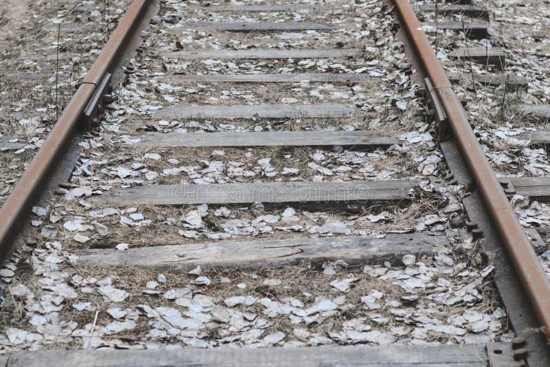 Железная дорога деревянные слиперы ретро она перерастана с травой не пошл натренировать стоковая фотография rf
