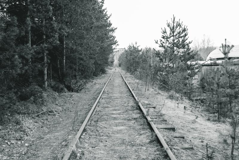 Железная дорога деревянные слиперы ретро она перерастана с травой не пошл натренировать стоковая фотография