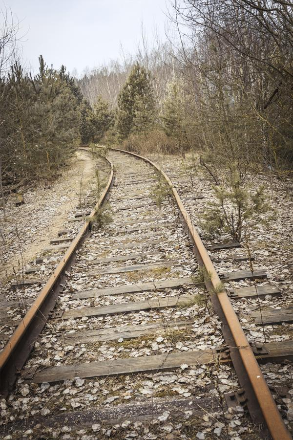 Железная дорога деревянные слиперы ретро она перерастана с травой не пошл натренировать стоковое изображение rf