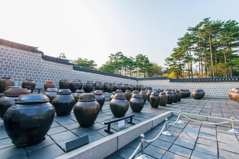 Опарникы или kimchi раздражают в Корее стоковые изображения rf