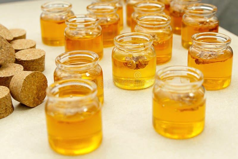 опарникы с медом стоковое изображение
