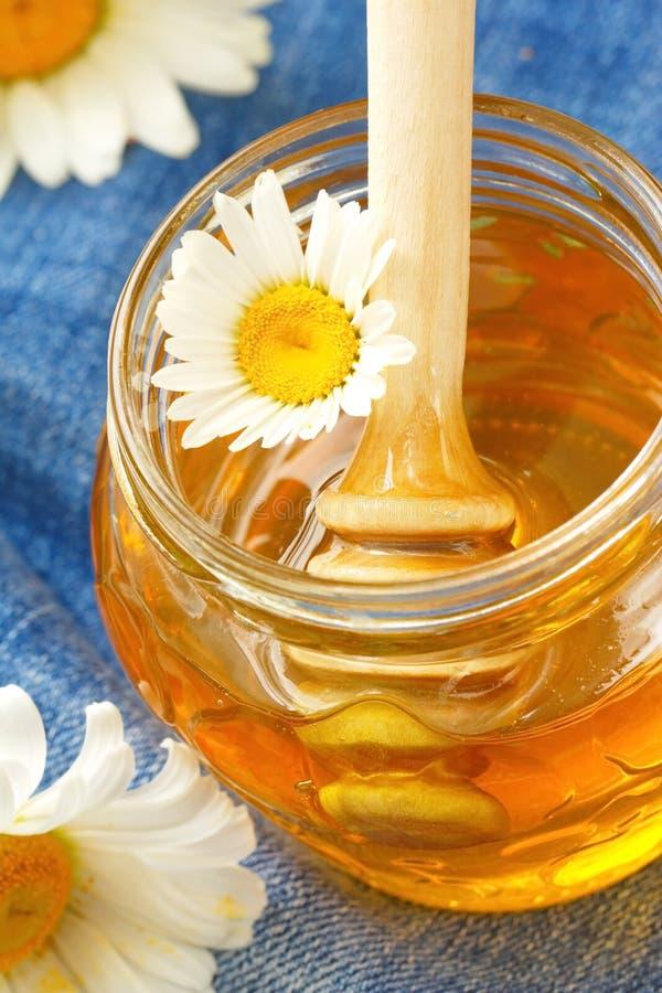 опарник меда фокуса цветка стеклянный селективный стоковые фотографии rf