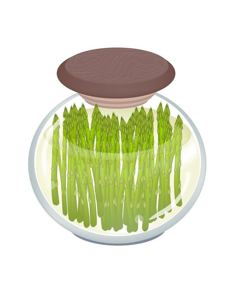 Опарник очень вкусной замаринованной зеленой спаржи иллюстрация вектора