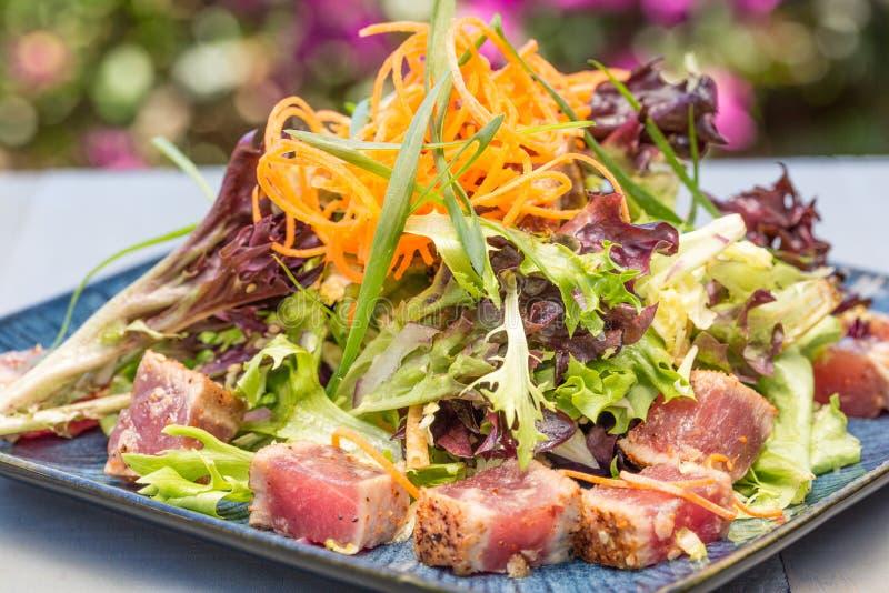 Опаленный салат Ahi стоковые изображения