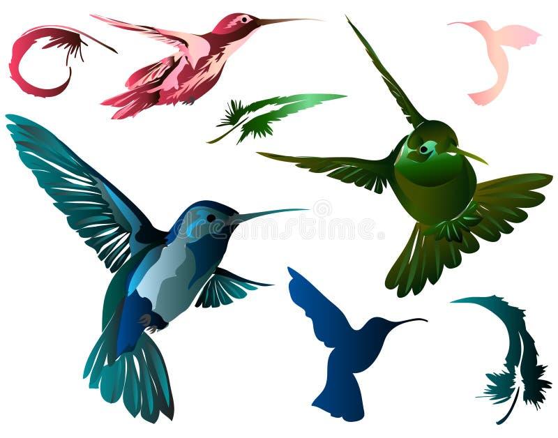 оперяет hummingbirds