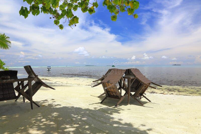 Опорожните внешнее кафе на береговой линии острова в Индийском океане, Мальдивах Красивые предпосылки природы стоковые фото