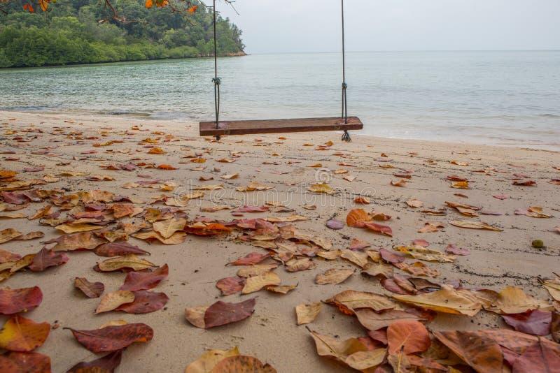 Опорожните качание пляжем v стоковое фото