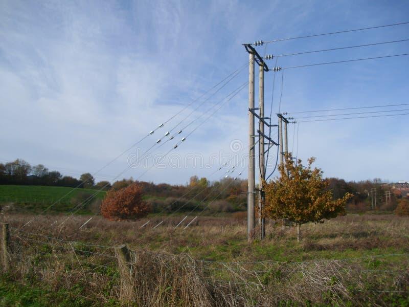 Опоры электричества Великобритании деревянные, взгляд со стороны стоковое фото