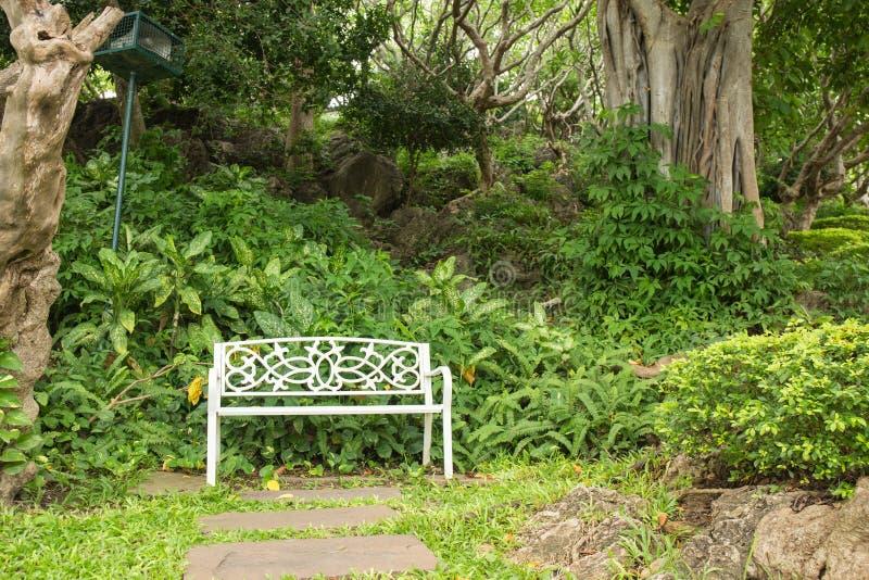 Определите белый стенд на парке с зеленым растением и деревом публично p стоковые изображения