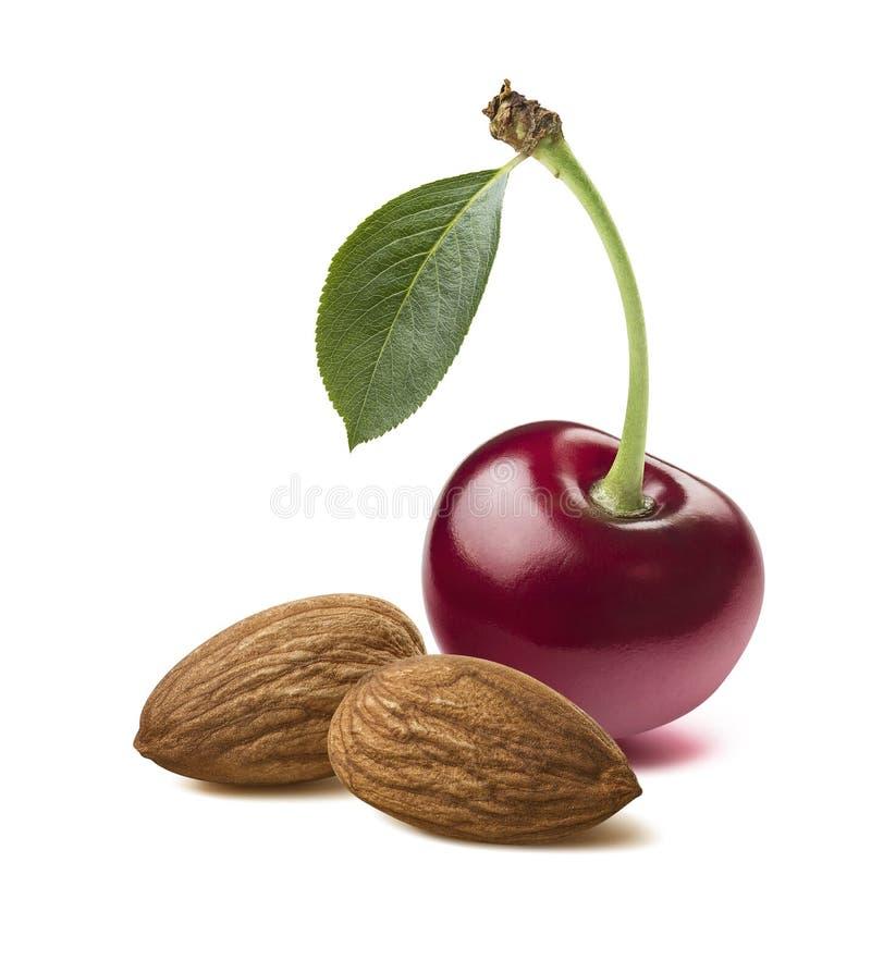 Определите красные миндалины двойника вишни изолированные на белой предпосылке стоковая фотография