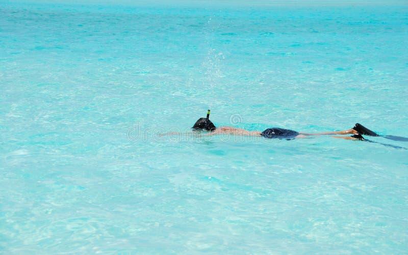 опыт snorkeling стоковое фото rf