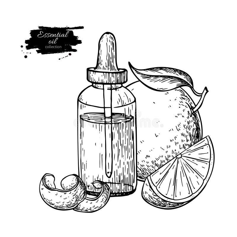 Оранжевая иллюстрация вектора руки бутылки и плода эфирного масла вычерченная иллюстрация штока