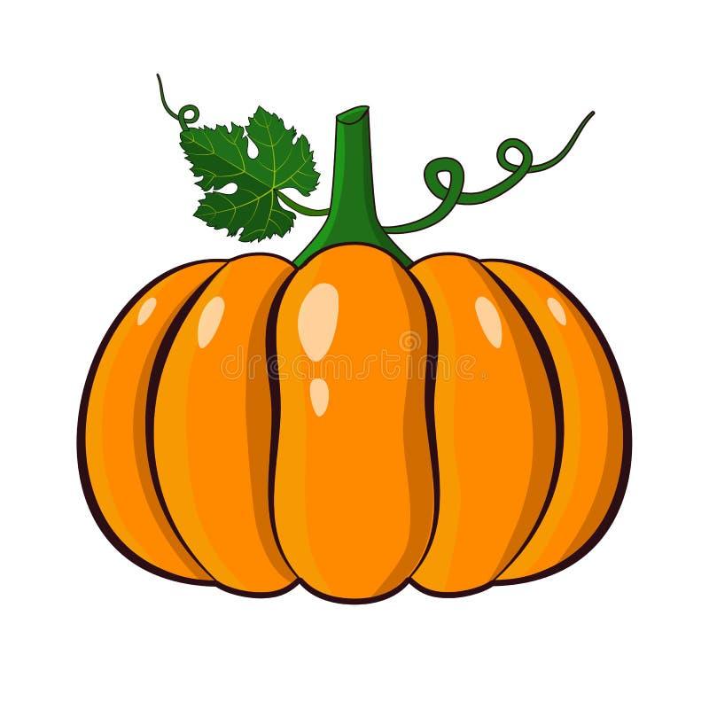 Оранжевая иллюстрация вектора тыквы Тыква хеллоуина осени иллюстрация штока